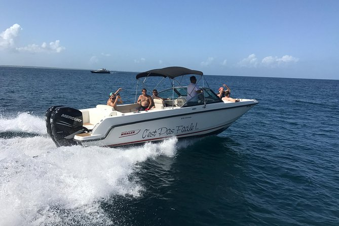 Private full day around St Martin/Maartn onboard our BRAND NEW Boston Whaler 270 Vantage that will smoothly take you around like on a lounge boat.