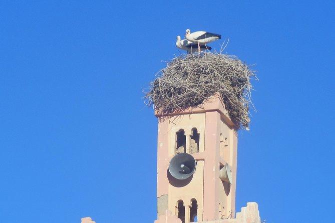 Escapada de un día a Volubilis Meknes, Fez, MARRUECOS