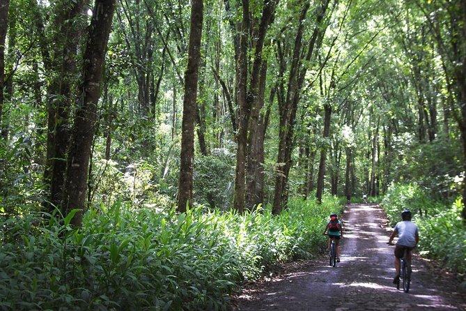 2 días de senderismo y bicicleta en la región cafetera de Pereira, Pereira, COLOMBIA