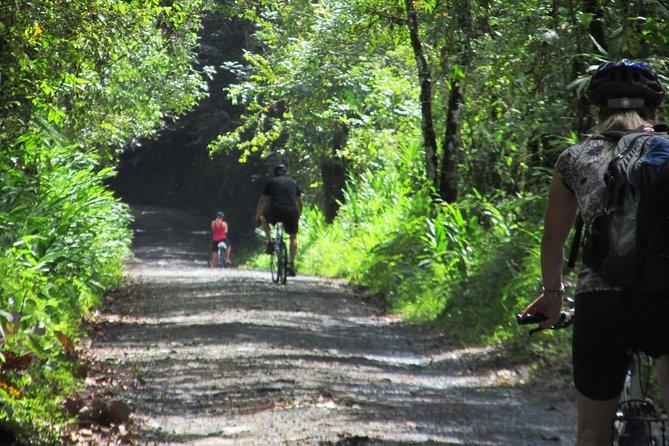 Excursión de 5 días en bicicleta que incluye café y cultura desde Pereira, Pereira, COLOMBIA