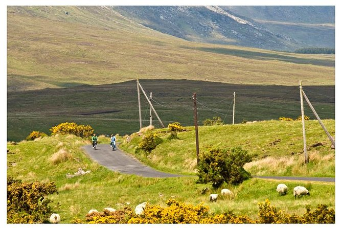 This electric bike tour takes you off the beaten track. Cars here are rare and its your day to take your time to explore, find a secluded beach, secret waterfall or track and relax. Using the Greenway, Ireland's only purpose built cycle route, we head off into a thousand square kilometres of wilderness exploring glacial riverbeds, waterfalls, bronze age forts, ancient abbeys and castles along the way. Stopping for gourmet lunch of local cuisine. This is a wilderness of many choices and each will give you a great sense of wonder and enjoyment. Here the sheep outnumber you by a hundred to one. Watch salmon leap up waterfalls, trout jump, herons and kingfishers dive and splash, and otters play.