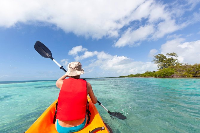 Take a Jeep tour and sightseeing through some of the island's main attractions! Go kayaking through the Mangroves after which, enjoy a day of snorkeling. Your Guide will provide you with snorkeling gear, Enjoy a sumptuous lunch at your leisure. Remember to take your sun screen with you.
