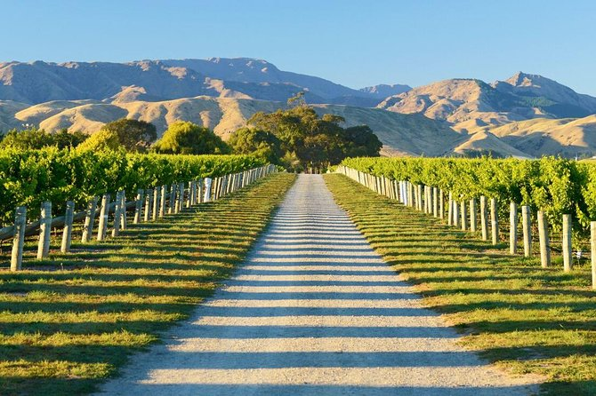 Enjoy a relaxing day out around some of the beautiful wineries in Marlborough. Learn about the regions great wines and sample at least 4 wines at each cellar door. Our tour is door to door so you don't have to worry about driving, just relax and enjoy your tour. Outside of peak times we don't have preset cellar doors so if you have somewhere you would like to go please message us and we will do our best to schedule your visit. There are over 30 cellar doors to choose from on a daily basis so plenty of variety.