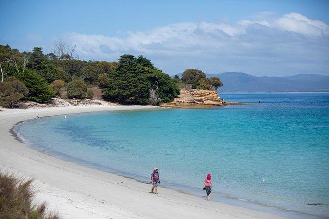 MÁS FOTOS, Maria Island Active Day Trip from Hobart