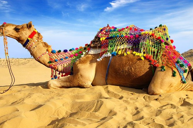 In This One Way Transfer Trip - One-Way Private Drop To New Delhi From Pushkar with Private Transportation,Planing a Private Transportation Transfer to Destination is easy with Get Booked instantly , Check Email for Follow Up messages and get ready to go to Destination you wish to go