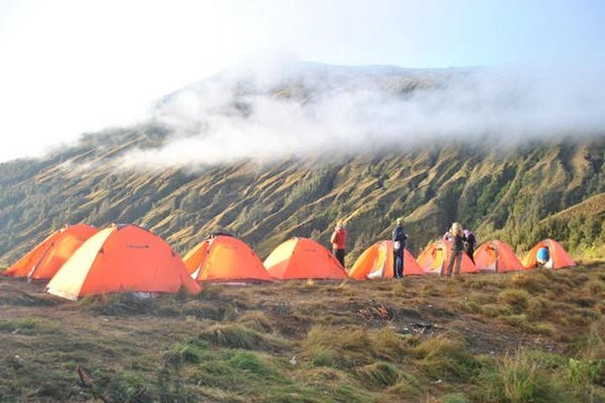 Trek to the summit of Mt Rinjani on this 2 day small group, guided hike from Senaru village. Mt Rinjani is the second highest volcano in Indonesia and is still active.  You will have amazing views of glistening sunrises and sunsets, you may even see the Milky Way on a clear evening. <br><br>You will trek up to the Sembalun Crater Rim on day 1 and then up to the summit on day 2 before your descent back down to the bottom.<br><br>This trek is for experienced trekkers or for people with excellent fitness levels who are able to hike up and down for an average of 8.5 hours per day.