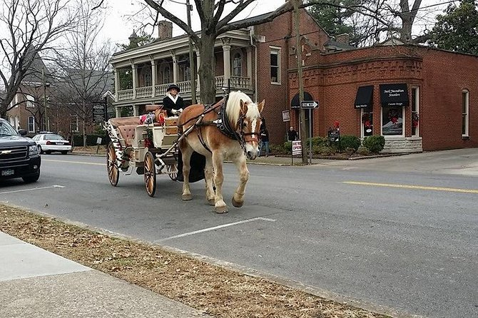 Private 45-Minute Downtown Nashville Horse and Carriage Ride, Nashville, TE, ESTADOS UNIDOS