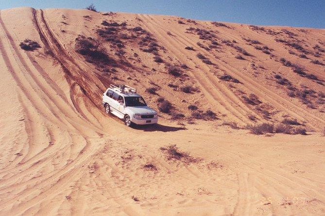 MÁS FOTOS, Desert Safari to Wahiba Sands and Wadi Bani Khalid from Muscat