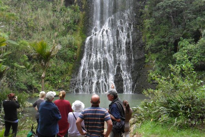 This full day tour is for lovers of nature and walking, your experienced local nature guide will take you to a range of rainforest, beach and clifftop walks. The black sand beaches and rainforest of West Auckland are unique in New Zealand and this tour is a great way to experience the best it has to offer.