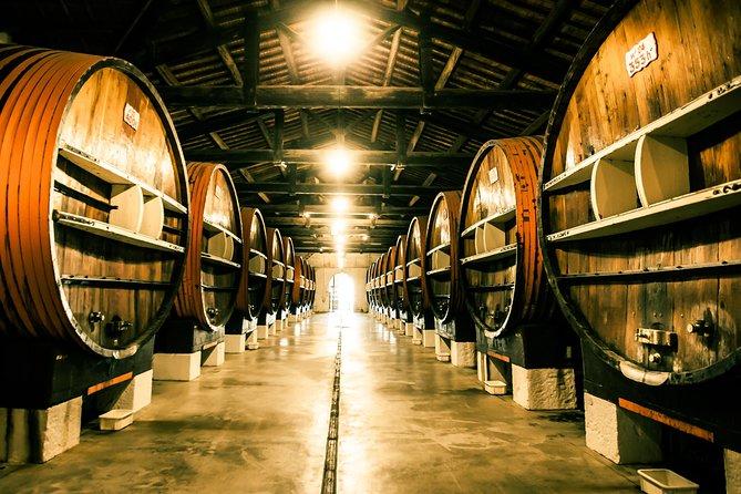 MÁS FOTOS, Noilly Prat Vermouth Cellar Tour and Tastings in Marseillan