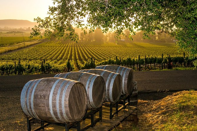 Come enjoy what the Fredericksburg wine region has to offer with this guided wine tour package. The hill country boasts over 60 wineries with more being built each year. This tour is perfect for couples, groups, bachelorette parties and wine enthusiasts.