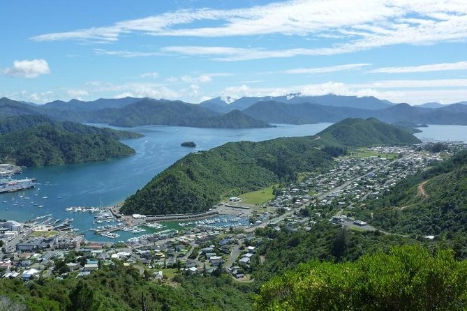 Full-Day Marlborough Scenic and Wine Tour from Picton, Picton, NOVA ZELÂNDIA
