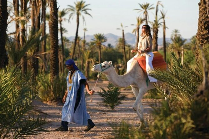 Marrakech City Tour: Private Half-Day Guided Tour, Marrakech, cidade de Marrocos, MARROCOS