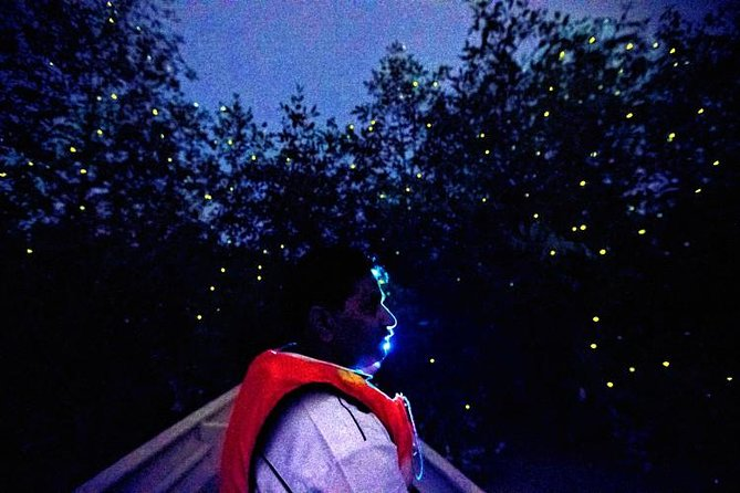 See millions of fireflies light up the night sky on this 6  to 8-hour half-day tour of Kuala Selangor, the only place in the region close to Kuala Lumpur where you can watch fireflies twinkling synchronously in the night air. Marvel at a wonder of nature on a boat trip, and enjoy a delicious set seafood dinner at a local fishing village.<br> • Historical & rustic town of Kuala Selangor<br> • Glorious & glistening fireflies along mangrove swamps<br> • Freshly caught dinner at a native seafood restaurant<br> • Haven for local & migratory birds<br> • Hassle free hotel pick up & drop off included