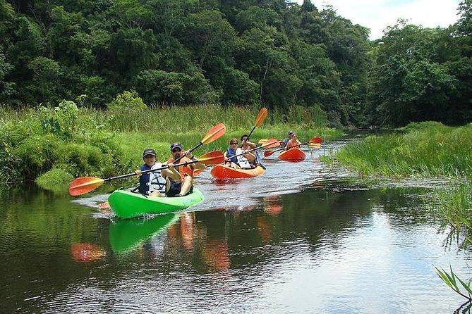 MÁS FOTOS, Excursión en barco en el Lago Gatún con paseo en kayak y almuerzo