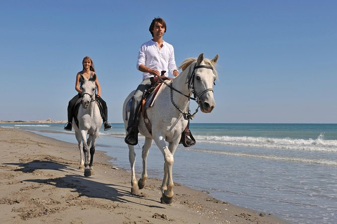 Ride through the waves on horseback! Discover the rich history of Jamaica as you ride on through the countryside. Stop at the beach, where you'll have time to relax before heading into the shallow waters on your horse! Designed for all experience levels, this tour is ideal if you're up for some adventure!