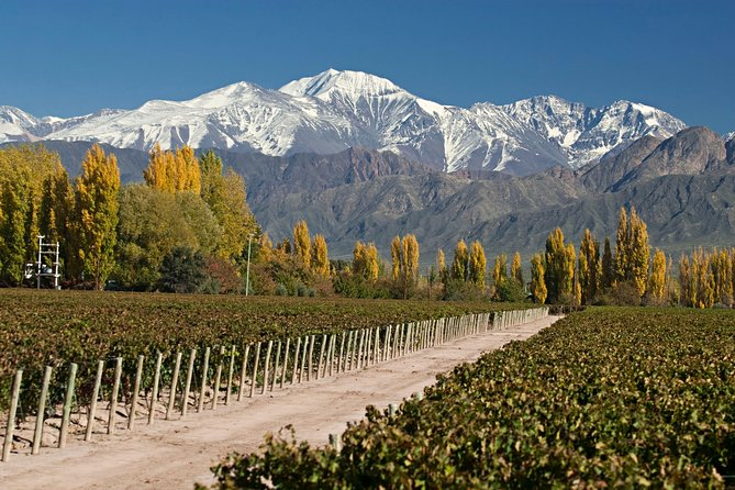MORE PHOTOS, 4-day trip to Mendoza by air