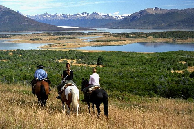 If you arrive at El Calafate in the morning or if you depart at night, the half-day program is perfect to experience the Patagonian rural life and complements the tour to the glaciers. It can be visited either in the morning or the afternoon and participate in different activities according to the time of each one. Among the activities, visitors can attend tests for horse reins and sheep shearing demonstration, and hikes. The trip includes an exquisite lamb grilled on a traditional Patagonian cross stake.<br><br>If you are available for the entire day, you can opt for the Full Day Option where, after lunch, you will have the opportunity to take a 3-hour horseback riding with a profesional guide.
