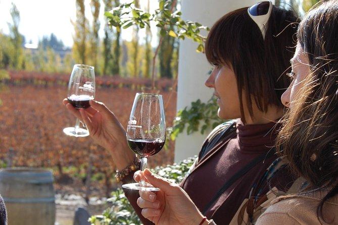 Tour de vinhos com a vinícola Trapiche, Mendoza, ARGENTINA