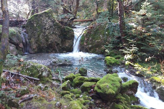 Menalon Trail- Elati, Kalamata, GRECIA