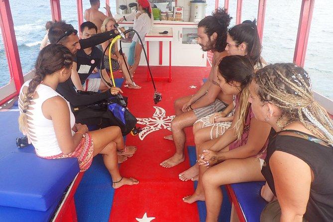 PADI Discover Scuba Diving in Koh Tao - half day and two dives, Ko Tao, TAILANDIA
