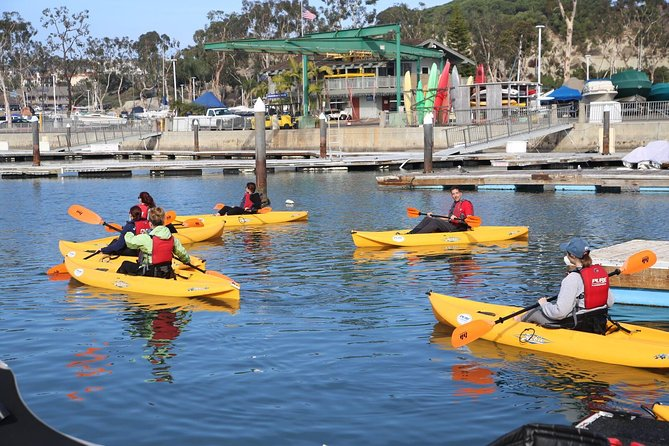 Explore the best of Dana Point and Huntington Beach on this day tour. Get an active start with a kayaking session and a scenic hike before getting immersed in surf culture at the International Surfing Museum. Take a scenic bicycle ride, try a local beer and enjoy a spectacular sunset and very traditional slice of Americana on the beach — toasting s'mores by the fire.