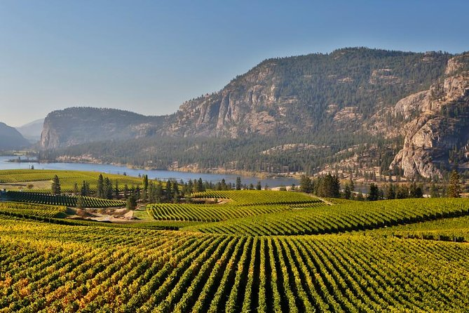 Oliver and Osoyoos Wine Tour, Kelowna y Okanagan Valley, CANADA