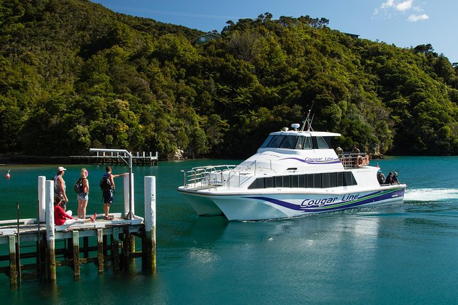 A perfect way to enjoy the Marlborough Sound if you have limited time. Witness 80km of beautiful coastline in 3 hours as we go into coves and hidden bays not seen from the Interisland ferries, with commentary from our experienced skippers.<br>