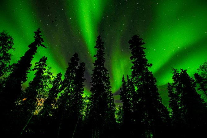 4- to 6-Hour Northern Lights Tour from Yellowknife, Yellowknife, CANADA