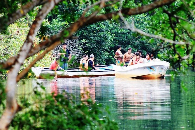 Enjoy a full day of fun on this eco-tour from Huatulco! Your friendly local guide takes you to the village of Ventanilla, where you'll ride a boat through the mangroves. Keep an eye out for crocodiles in the lagoon before spotting a variety of sea turtles on a visit to the National Mexican Turtle Center in Mazunte. Finish your day trip in Zipolite, a seaside 'hippie' town that's popular with surfers. Receive personal attention on this small-group tour, limited to 20 people.