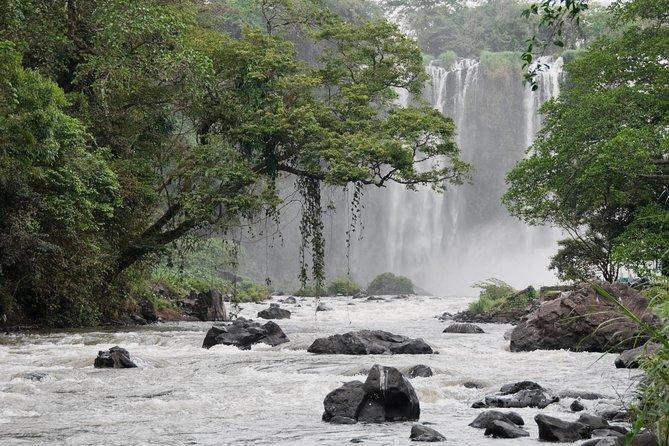 MÁS FOTOS, Catemaco Lake and Los Tuxtlas Day Trip from Veracruz