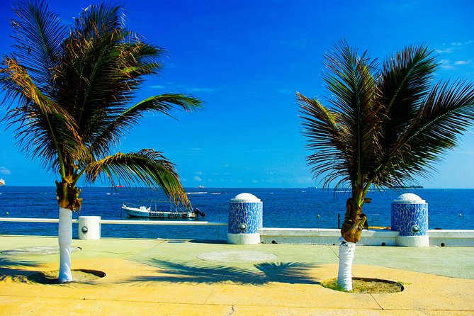 See Veracruz's top attractions on this 3-hour morning sightseeing tour that includes admission to San Juan de Ulúa, a 16th-century fortress and one of Veracruz's most visited landmarks. You'll also see city sights such as the Zocalo, the Municipal Palace and the 'malecón,' or boardwalk, and take a drive through neighboring Boca del Río. This is a great way to orient yourself with the city at the beginning of your stay.