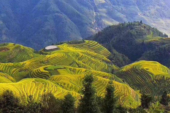 The terraced fields are located in Longji township of the Longsheng county,78 kilometers from Guilin City.The lowest terraced field is 380 meters above sea level,and the highest 1,850 meters above sea level,over 1500meters in difference,with the typical climate characteristics of the mountainous areas.The overlapped terraced fields are mainly spread in the mountainous areas ranging from 300 to 1,100 meters avove sea level,spiraling from the foot of the mountain to the top.<br><br>Longji village is home to the Zhuang and Yao people,who live in the traditional stockade wooden buildings.Standing at the wooden building,tourists can appreciate the sunset,clouds and fogs,taste mellow wine,watch the bamboo pole dance performed by villagers,and take pictures of the fascinating scenery.