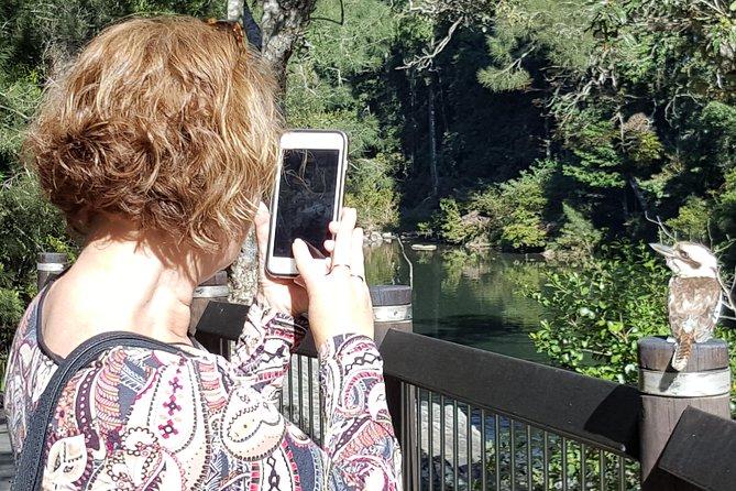 Personalised Private Platypus Land Tour, Mackay, AUSTRALIA