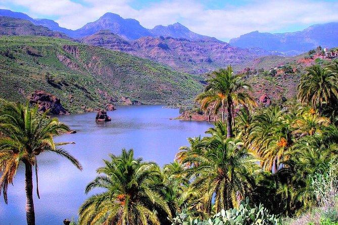 Excursão guiada em grupo VIP em Gran Canaria com duração de 9 horas em ônibus compartilhado, Gran Canaria, Espanha