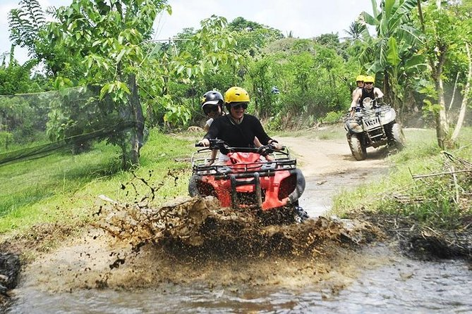 Quad bike adventure and monkey forest is combination between activity and sightseeing. On this program the firts you will do the quad bike to challenge your adrenaline and your experience on four wheel, after that you will be see the coffee making process before we visit the ubud monkey forest.