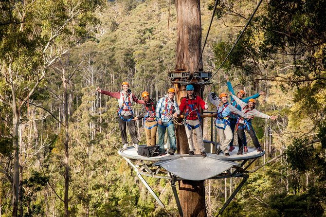 Experience Tasmania from the forest floor all the way up into the treetops! Hollybank Treetops Adventure Tasmania's First Outdoor Adventure Centre, the ultimate hub of adventures to suit everyone. Our Canopy Tour is an approx 3hr guided tour through the treetops on wires between the Cloud Station platforms. You will also get to experience Australia's longest zipline of 400m that flies over the stunning Piper River, reaching up to 50m high above the forest floor. Digital photos of your experience are also included.Tour is limited to a maximum of 12  travelers.