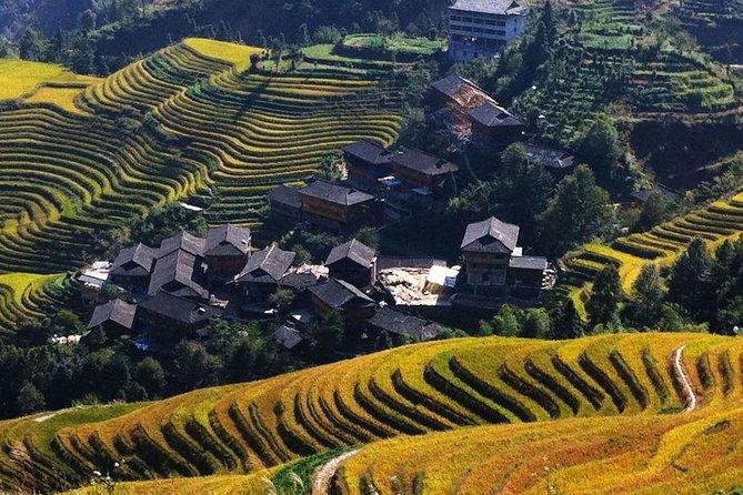 Guilin Bus Tour of Longji Rice Terraces at Jinkeng Village, Guilin, CHINA