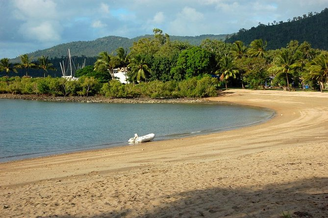 Shared Arrival Transfer: Proserpine Airport to Airlie Beach or Shute Harbour Hotels, Airlie Beach, AUSTRALIA