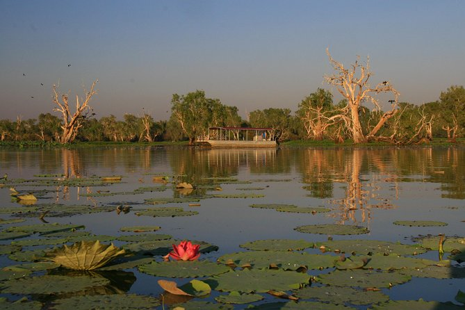 Only 90 minutes drive from Darwin on your way to Kakadu National Park, is a wetland experience not to be missed. <br><br>Corroboree Billabong is part of the beautiful Mary River Wetlands and apart from teeming with birdlife, it boasts the largest concentration of saltwater crocodiles in the world. View these prehistoric creatures in their natural environment cruising past our vessel or basking on the banks of the billabong. <br><br>The sunset cruise allows you to view the wildlife during their active periods. Birds are trying to catch their final meals for the evening and crocodiles are on the move ready for a night of hunting. Add to this a spectacular sunset over the floodplains as we gently cruise around the Billabong and it`s easy to understand why this is one of our most popular cruises. Guests are provided with amazing photograph opportunities throughout the entire cruise as the sun sinks below the horizon. We are the only company in this region offering sunset cruises to their customers. <br>