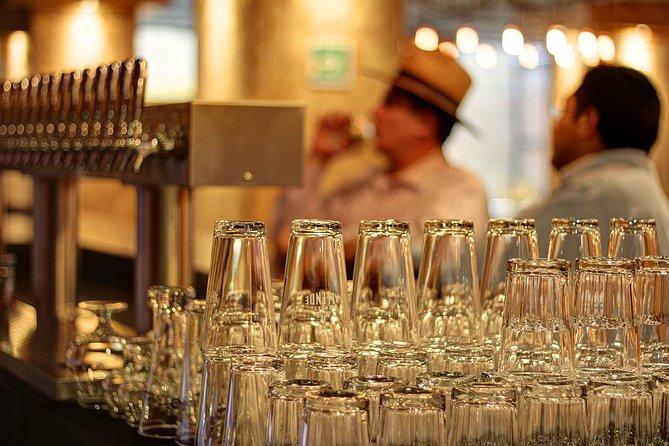 TuriCervecero CDMX - Tasting Tour and Craft Beer Experience, Ciudad de Mexico, Mexico