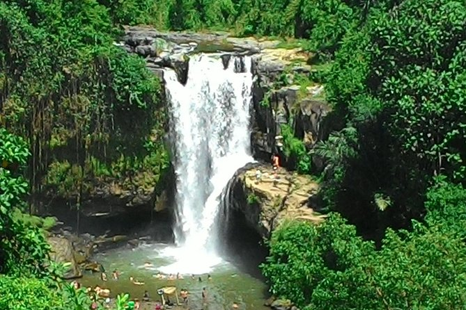 Enjoy your holiday in Bali by seeing the highlight of Bali such as Hindu temple, rice terrace, waterfall, lunch and scenery. <br><br>Your expert driver will strive to do the best to make your holiday be memorable one. The price is quoted per person for minimum 2 person and different price would be applied for bigger size group. The trip would be start from the port or from your hotel's lobby that located in major tourist region such as Kuta, Seminyak, Sanur, Ubud, Nusadua and Tanjung Benoa, and will drop you back to the port or your hotel again at the end of the trip. <br><br>Have a nice holiday
