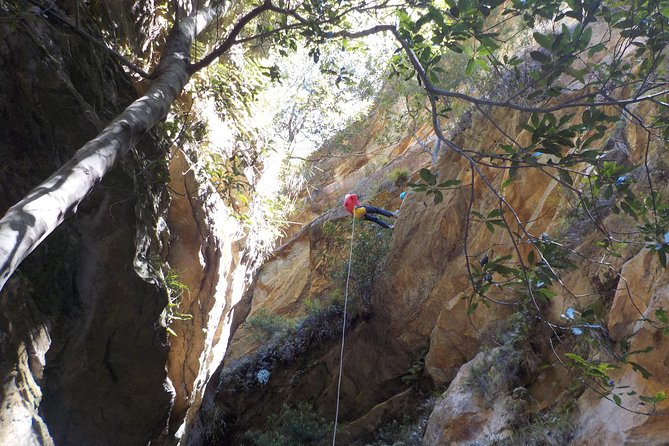 MAIS FOTOS, Juggler Canyon and Abseiling Adventure Blue Mountains