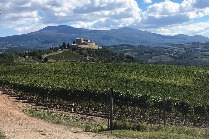 Half day e-bike tour in the land of Brunello starting from the medieval town of Montalcino.<br>The e-bike tour is set on the southern part of Montalcino and Brunello region, riding on paved and gravel roads, through vineyards and woods. <br>Before the wine tour and tasting you'll visit the Abbey of Sant'Antimo, one of the most significant Romanesque monuments and a significant example of the monastic building of the early twelfth century.<br>We'll stop in a local Brunello winery for a wine tour and tasting, during the visit the wine making process is explained (harvest, fermentation, bottling, storage). <br>At the end of the tour you'll taste 3 wines with a light lunch of cold cuts and cheese.<br>