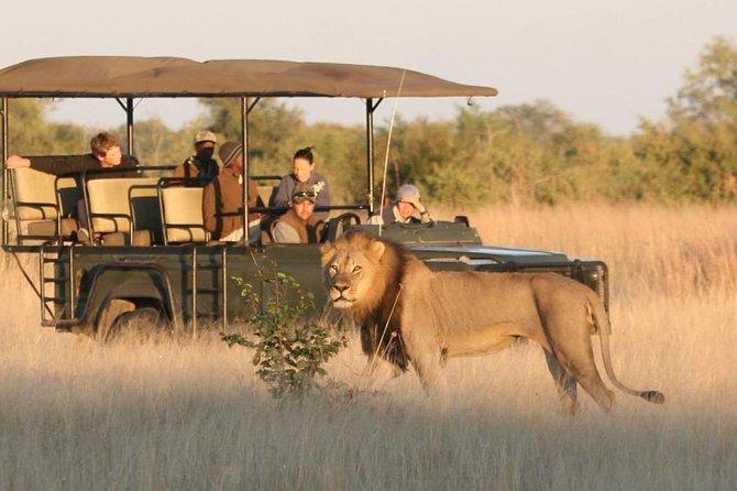 Hwange (Safari) Day Trip from Victoria Falls, Cataratas Victoria, ZIMBABUE