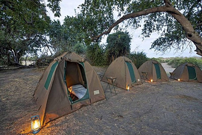 This 2 days 1 night camping trip will give you the pure african night and day experience in the bush, interacting on close range with the world's most formidable wild animals, all in one camping safari package all inclusive.