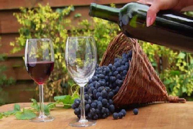 Excursiones de vino en la región vinícola de Mendoza, Argentina, Mendoza, ARGENTINA
