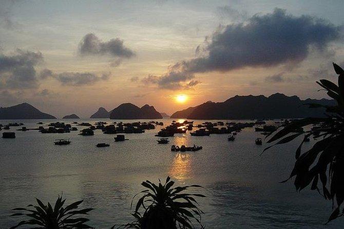 MÁS FOTOS, 3-Day Luxury Bai Tu Long Bay Cruise on the Dragon Pearl Junk Boat