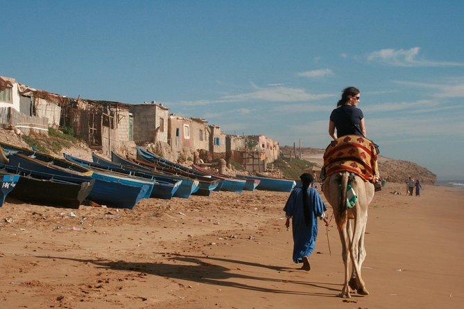 2-Hour Camel Ride, Agadir, MARRUECOS