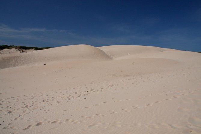 Desert Sahara Sand Dunes in Agadir, Agadir, MARRUECOS
